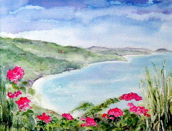 Painting - Cane Garden Bay by Diane Kirk