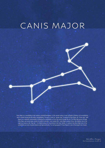 Wall Art - Mixed Media - Canis Major The Constellations Minimalist Series 18 by Design Turnpike