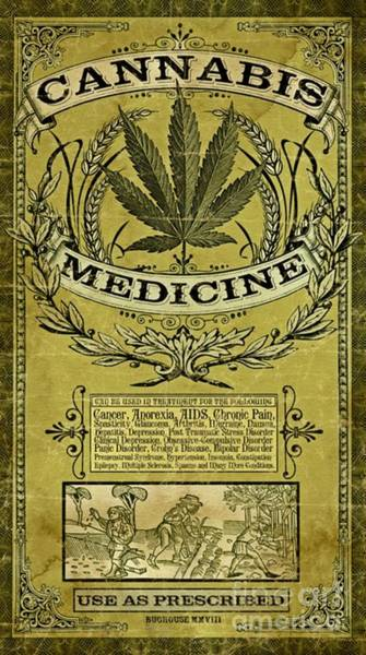 Wall Art - Photograph - Cannabis Medicine Poster by Pd