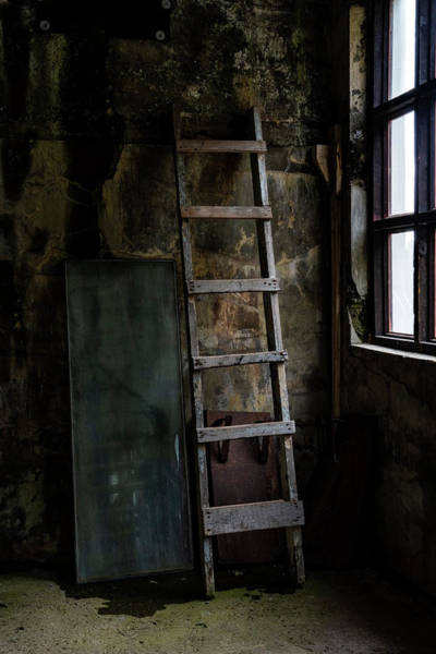 Photograph - Cannery Ladder by Tom Singleton