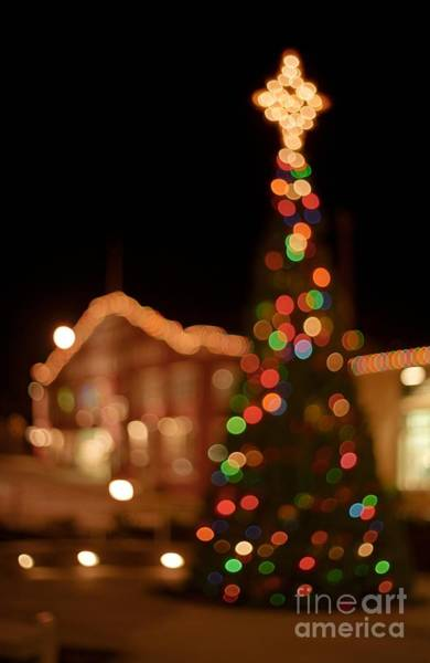 Photograph - Cannery Row Christmas Lights by James B Toy