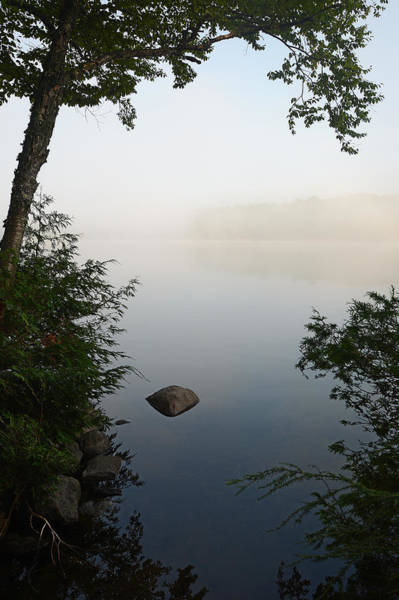 Photograph - Canning Lake Mist by Steve Somerville
