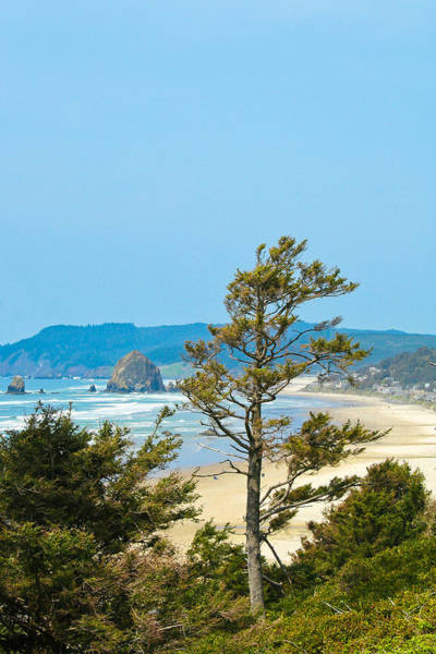 Photograph - Cannon Beach From The Distance by David Patterson
