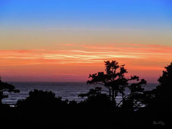 Photograph - Cannon Beach Last Light by Susan Molnar