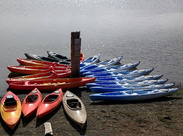 Photograph - Canoe Palette by Peter Dyke