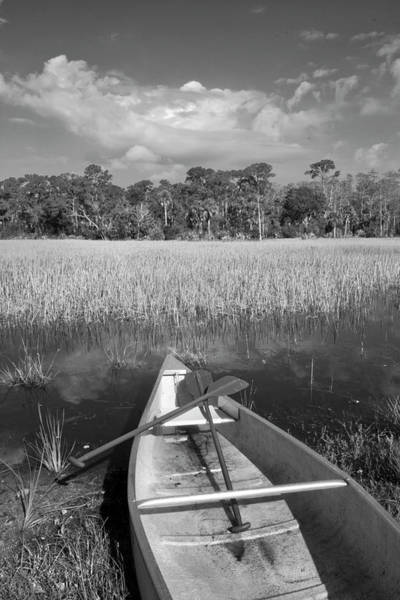 Photograph - Canoeing In The Glades In Black And White by Debra and Dave Vanderlaan