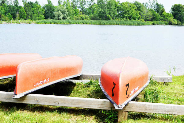 Photograph - Canoes by Traci Cottingham