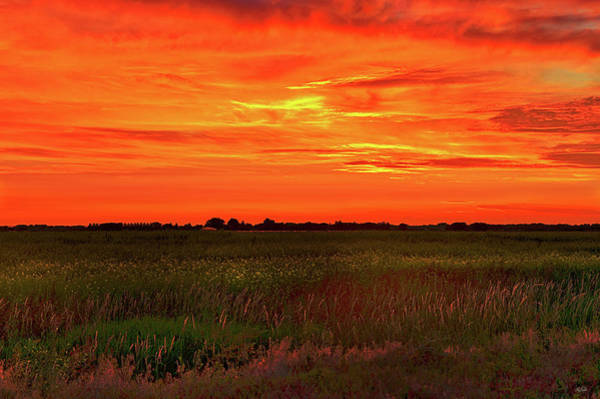 Photograph - Canola Sunset by Greg Norrell