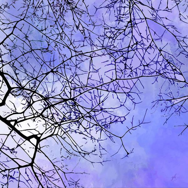 Digital Art - Canopy by Gina Harrison