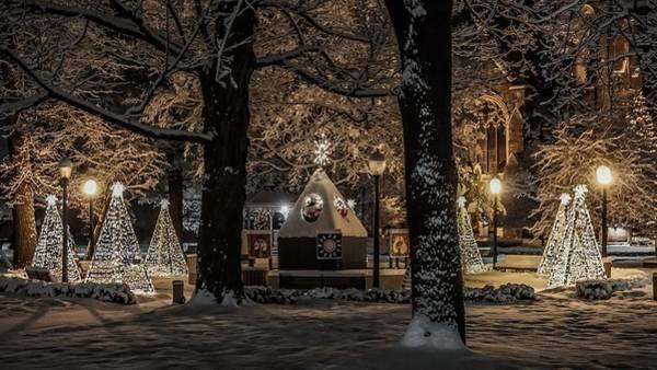 Canopy Of Christmas Lights Art Print
