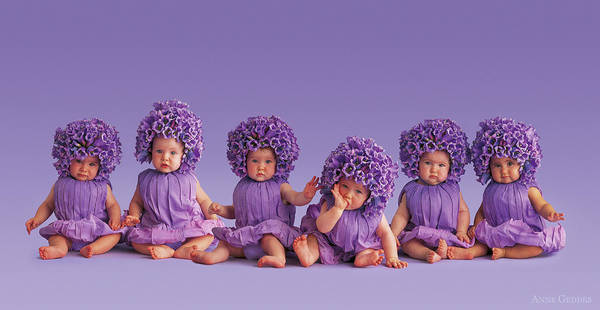 Baby Photograph - Cantebury Bells by Anne Geddes