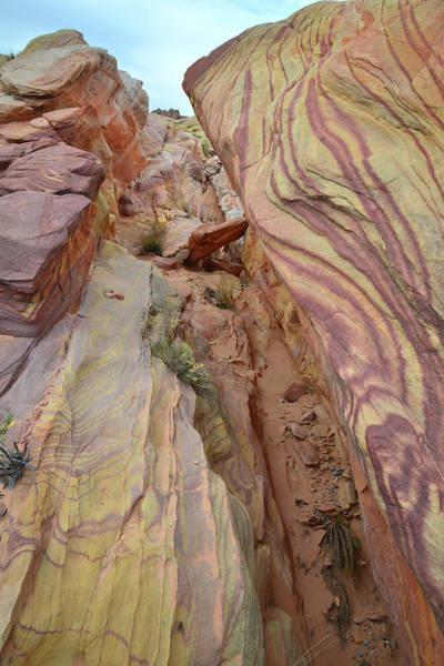 Photograph - Canyon Color Swirls In Valley Of Fire by Ray Mathis