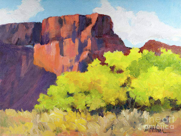Chinle Painting - Canyon De Chelly by Nancy Nuttelman