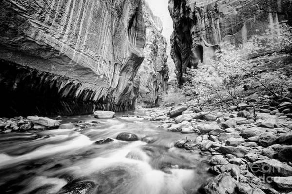 Photograph - Canyon Flow by Scott Kemper