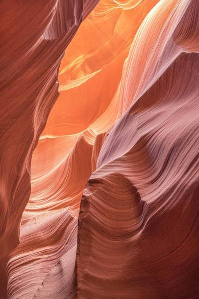 Photograph - Canyon Magic  by Jeanne May