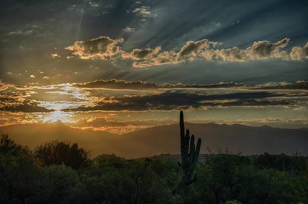 Photograph - Canyon Ranch Dawn by Dan McManus