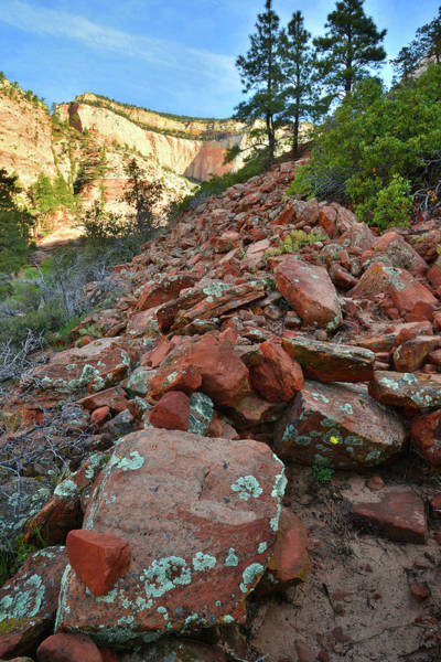 Photograph - Canyon Rock Fall by Ray Mathis