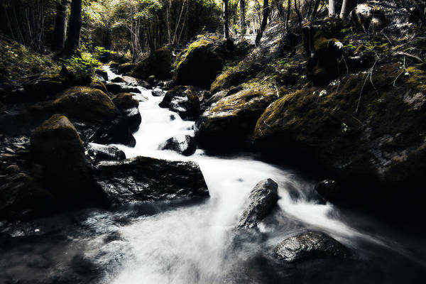 Photograph - Canyon Stream by Digital Art Cafe