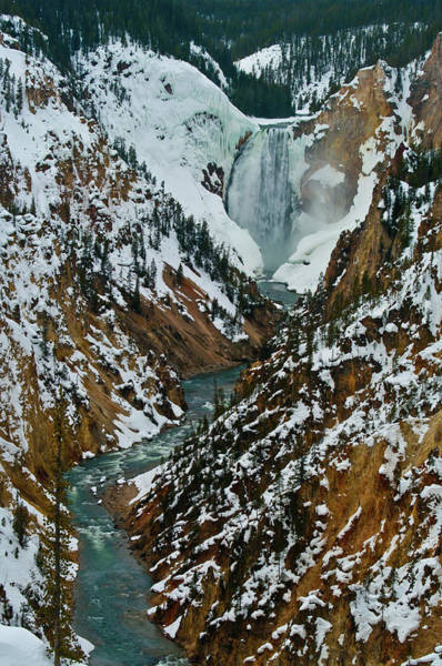 Wall Art - Photograph - Canyon Wonder by Melissa  Riggs