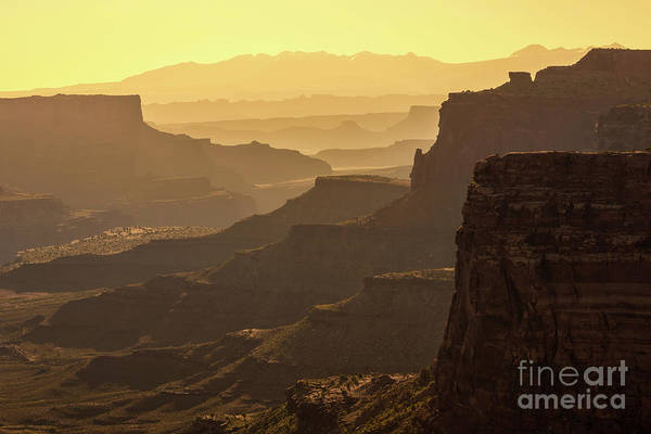Wall Art - Photograph - Canyonland Layers by Anthony Heflin
