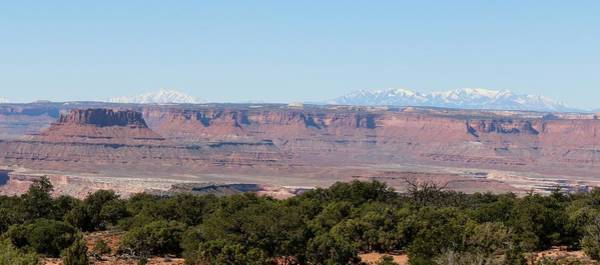 Photograph - Canyonlands View - 10 by Christy Pooschke