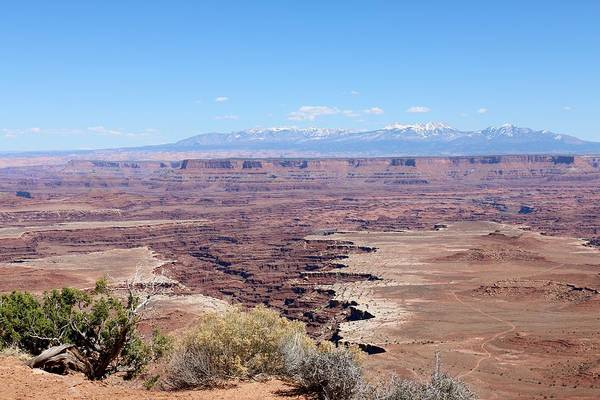 Photograph - Canyonlands View - 19 by Christy Pooschke