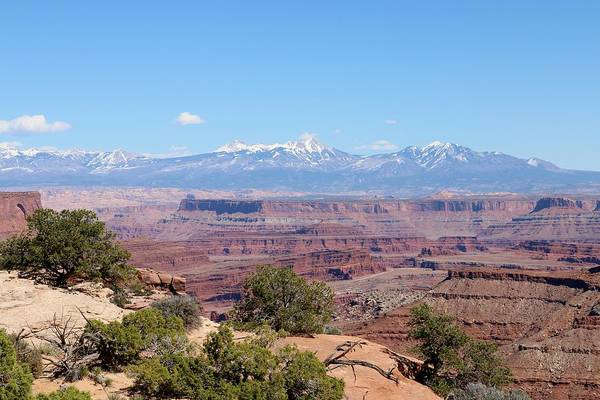 Photograph - Canyonlands View - 22 by Christy Pooschke
