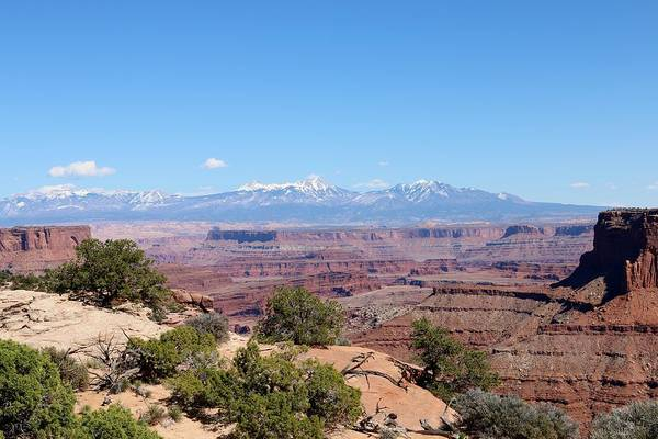 Photograph - Canyonlands View - 23 by Christy Pooschke