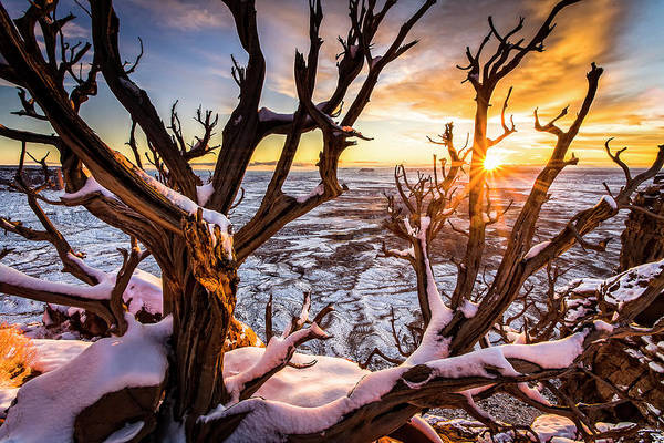 Canyonlands Winter Sunset Art Print