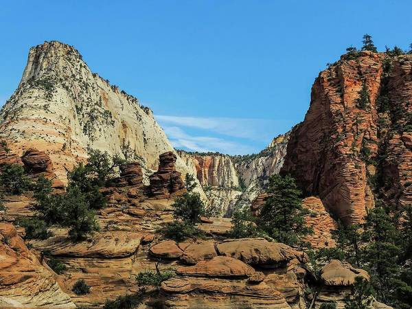 Photograph - Canyon Panorama In Zion Natioal Park by NaturesPix