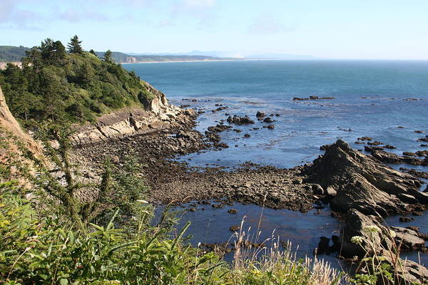 Photograph - Cape Arago by Dylan Punke