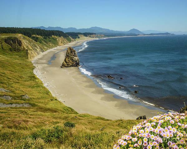 Wall Art - Photograph - Cape Blanco On The Oregon Coast By Michael Tidwell by Michael Tidwell