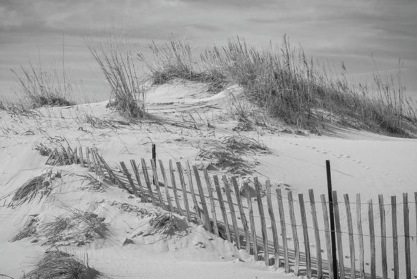 Photograph - Cape Charles by Amanda Rimmer