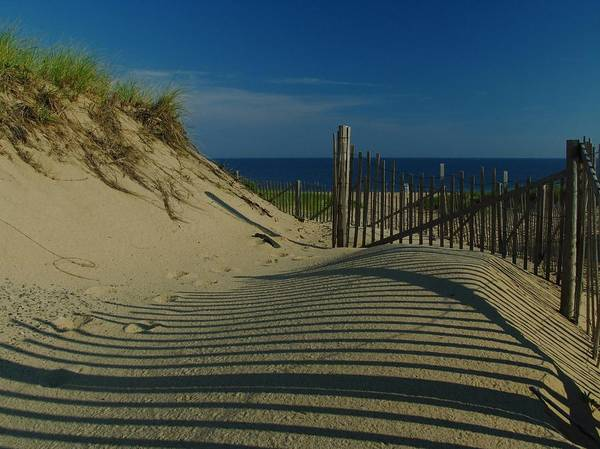 Photograph - Cape Cod National Seashore by Juergen Roth