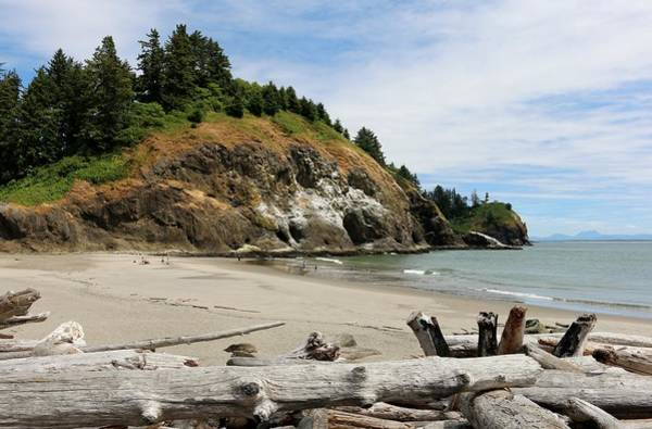 Photograph - Cape Disappointment - 2 by Christy Pooschke