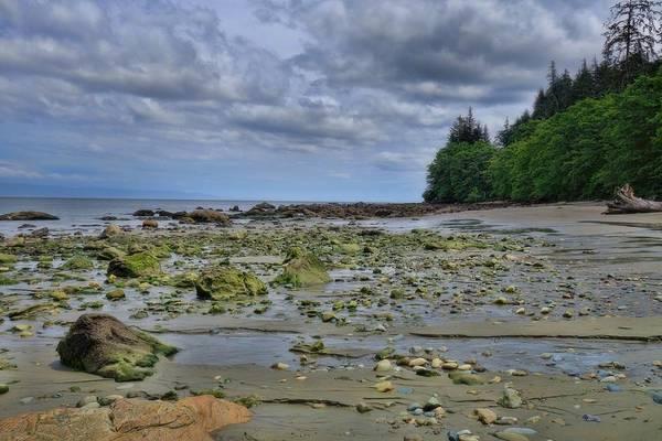 Photograph - Cape Flattery Coastline by Dan Sproul