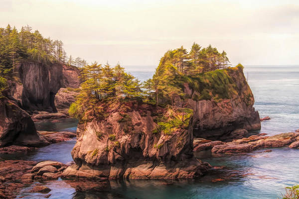 Painting - Cape Flattery by Dan Sproul