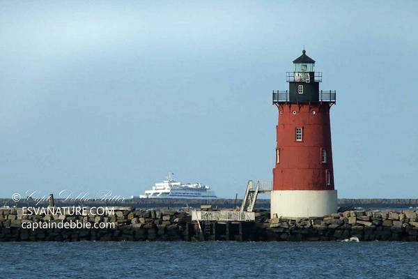 Photograph - Cape May Ferry And Lighthouse by Captain Debbie Ritter