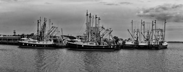 Photograph - Cape May Fishing Fleet by Louis Dallara