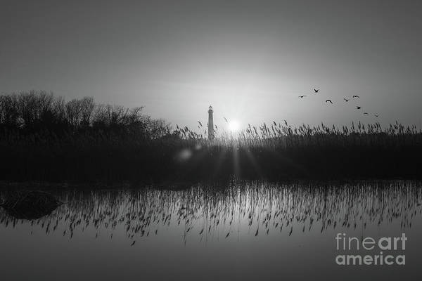 Cape May Lighthouse Photograph - Cape May Light Bw by Michael Ver Sprill