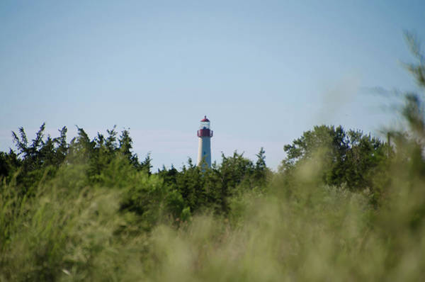 Photograph - Cape May Lighthouse Peeking Over The Dunes by Bill Cannon