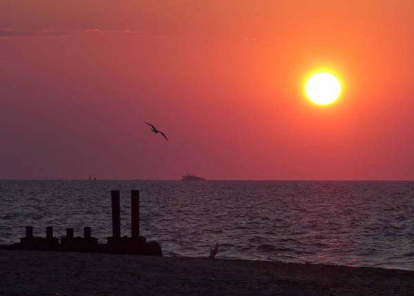 Photograph - Cape May Rising by JAMART Photography