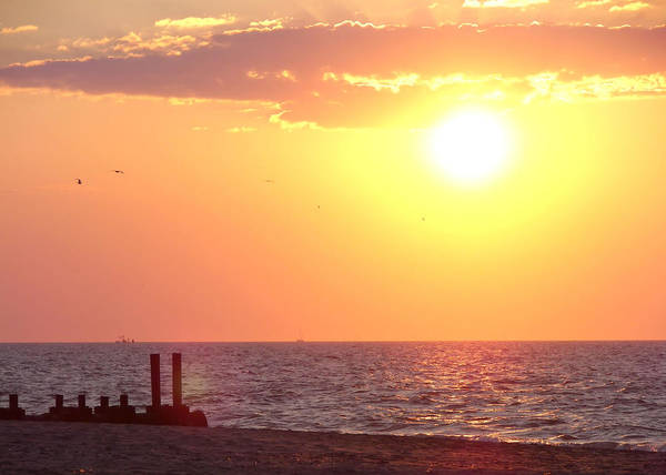 Photograph - Cape May Sunrise  by JAMART Photography