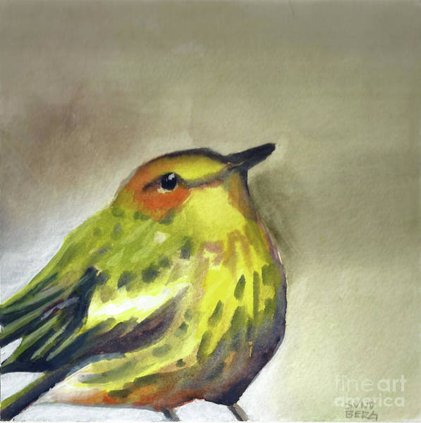 Cape May Painting - Cape May Warbler Study by Laurel Sundberg