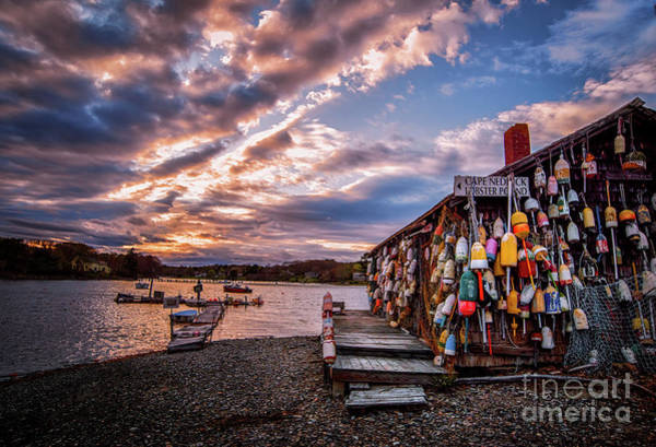 Lobstering Photograph - Cape Neddick Lobster Pound by Scott Thorp