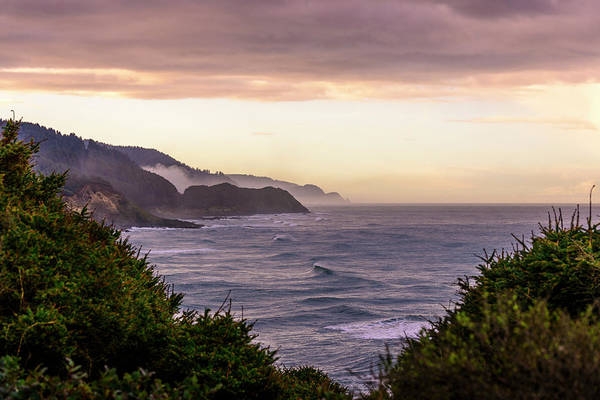 Photograph - Cape Perpetua, Oregon Coast by Bryan Xavier