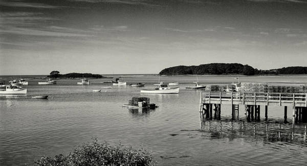 Photograph - Cape Porpoise Harbor by Samuel M Purvis III