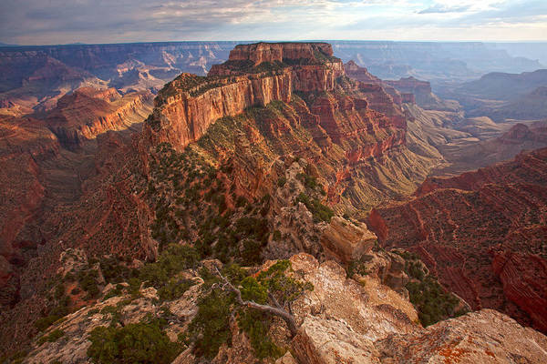 North Rim Photograph - Cape Royal Sunset by Mike Buchheit