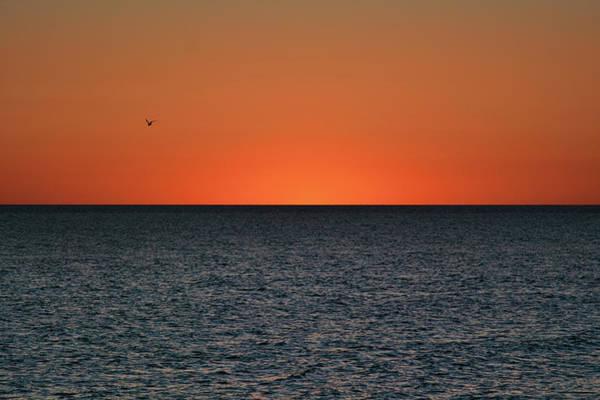 Photograph - Cape San Blas Sunset by Jai Johnson
