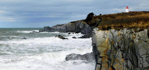 Wall Art - Photograph - Cape St. Mary's by Karen Cook
